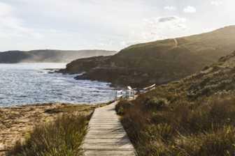 Stroll Through the Bouddi Coastal Walk
