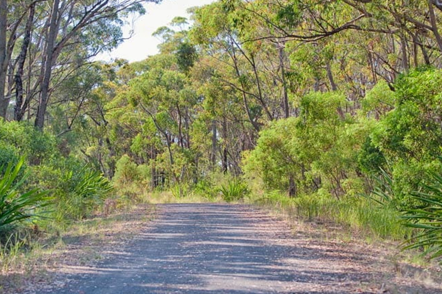 Bike Ride & Picnic in the Dharawal National Park