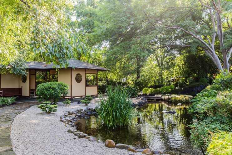 Tranquillity in Japanese Gardens