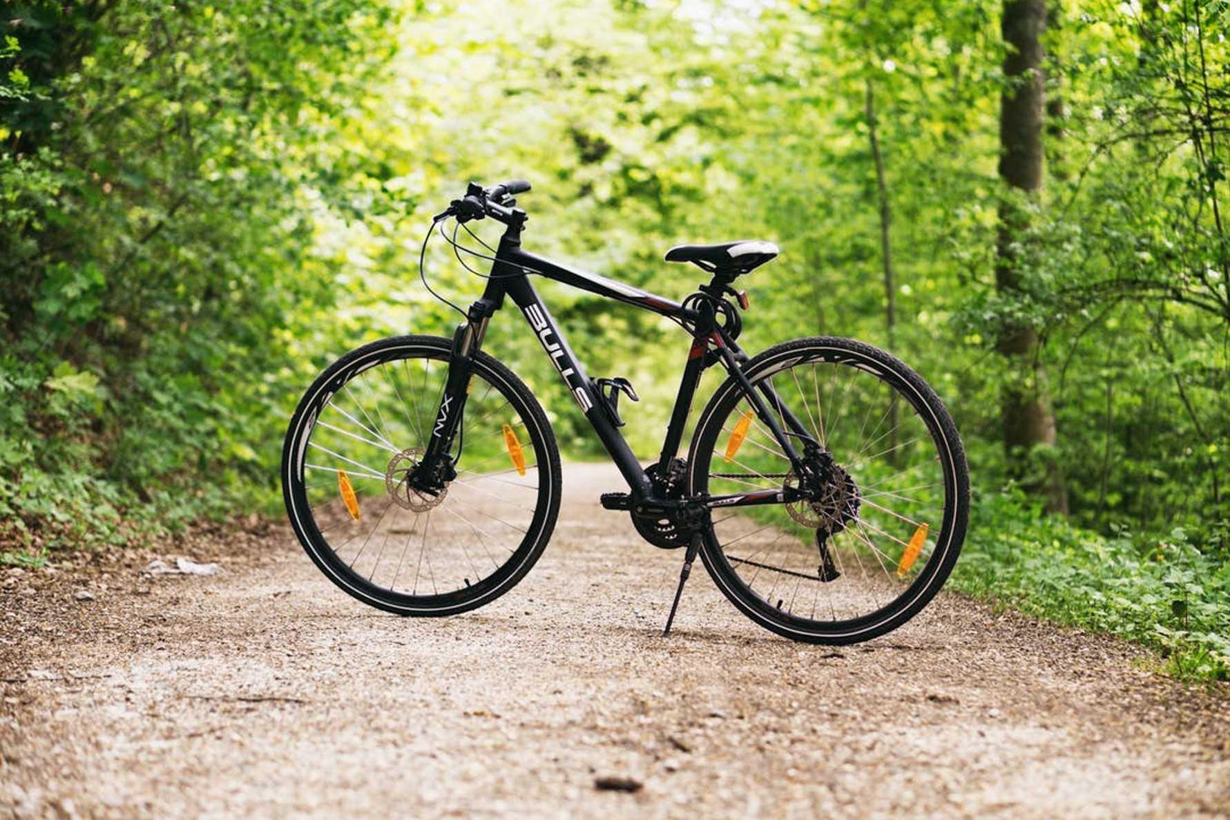 Bike Ride the Parramatta Valley Cycleway