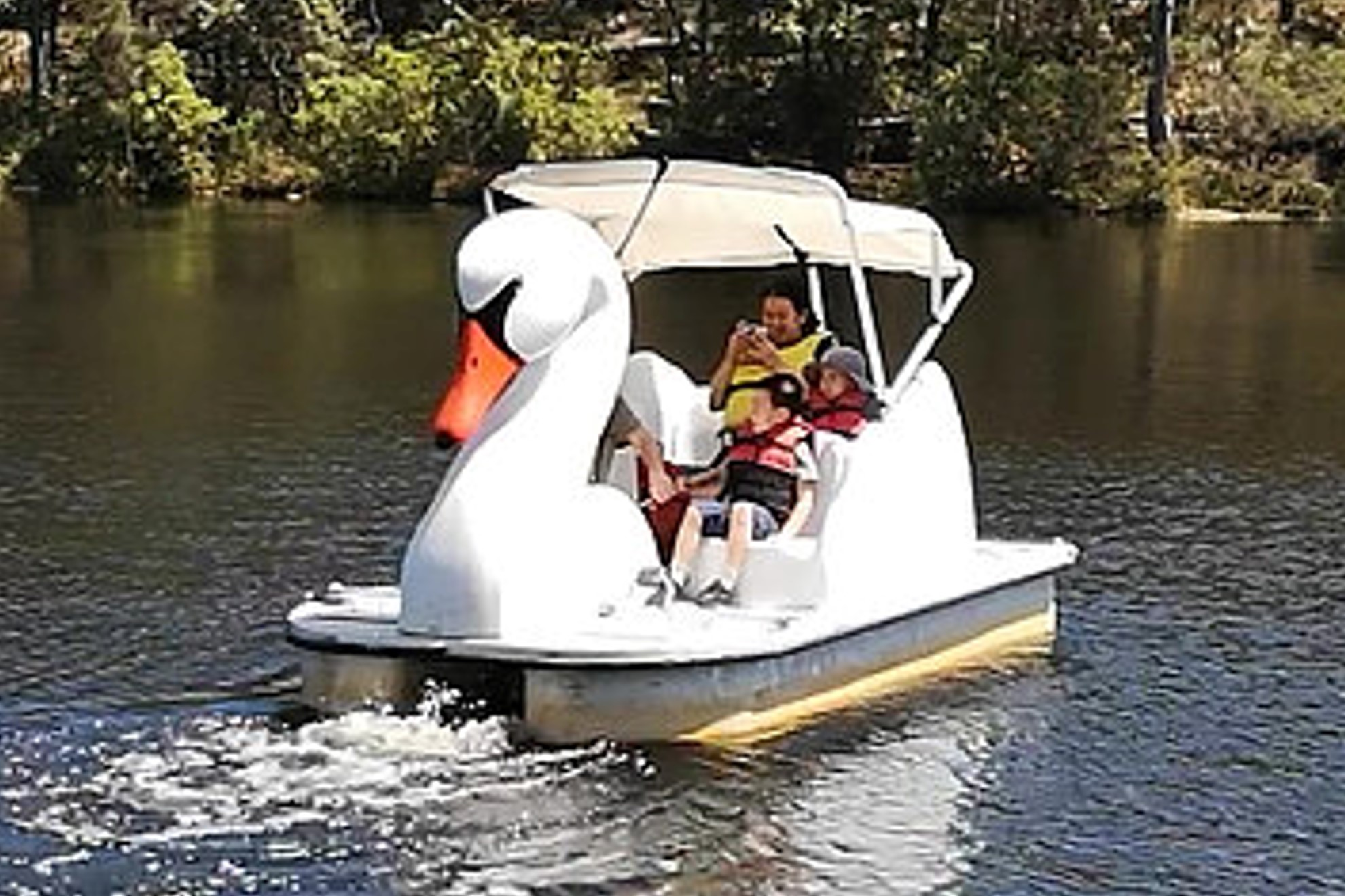 Take Out a Pedalboat or Rowboat on the Lake