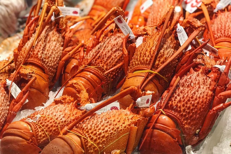 Fresh Seafood at the Sydney Fish Markets