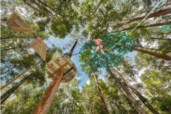 Rise to New Heights at Tree-Tops Adventure Park
