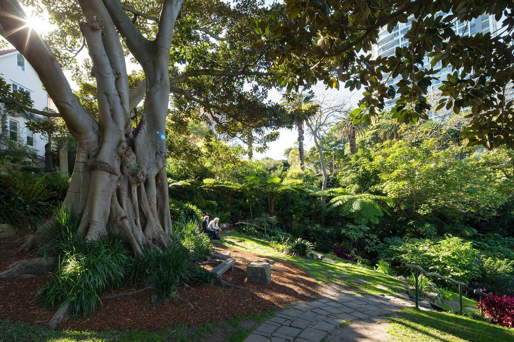 Picnic at Wendy's Secret Garden in Lavender Bay